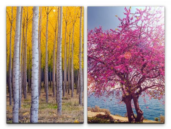 2 Bilder je 60x90cm Birkenwald Birke Baumblüten Mittelmeer Sommer Warm Entspannend