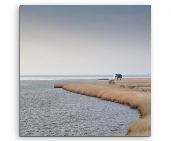 Landschaftsfotografie – Schilf am Meer, Nieuwe Statenzijl auf Leinwand exklusives Wandbild moderne
