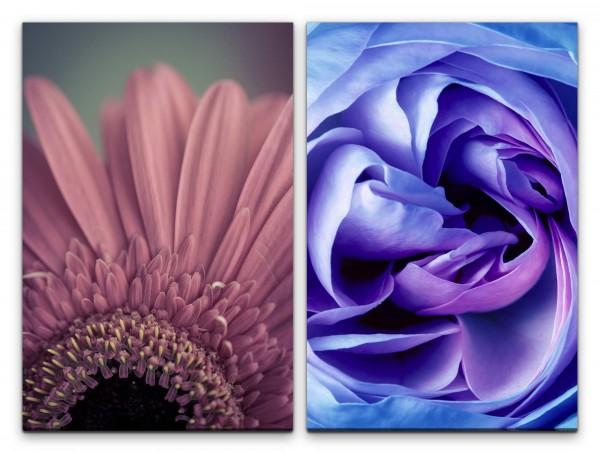2 Bilder je 60x90cm Zinnie Rose Blumen Seide Farbenfroh Dekorativ Feminin