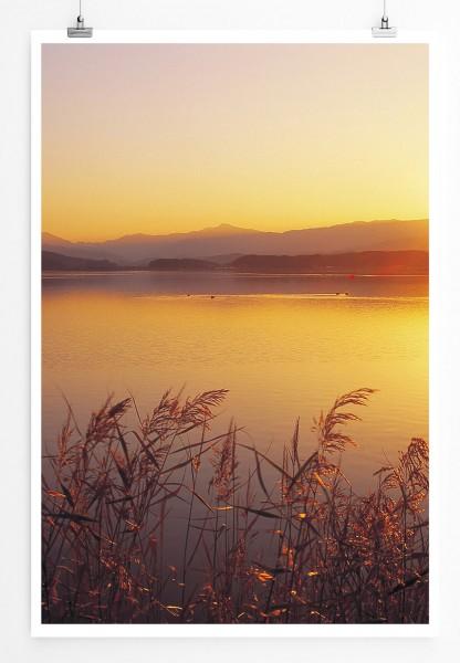 60x90cm Landschaftsfotografie Poster Goldener Schilfsee