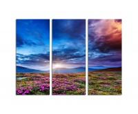 130x90cm Sonnenuntergang Karpaten Berge bunte Blumen