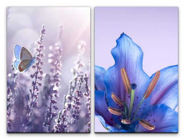 2 Bilder je 60x90cm Schmetterling Blüte Blau Sommer Dekorativ Blumen Makrofotografie