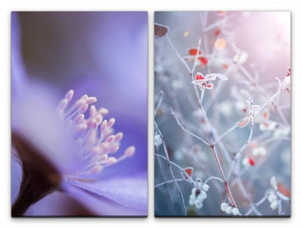 2 Bilder je 60x90cm Blume Frost Zeige Kühl Dekorativ Modern Fotokunst