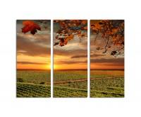 130x90cm Chianti Weinanbaugebiet Weinberge Toskana
