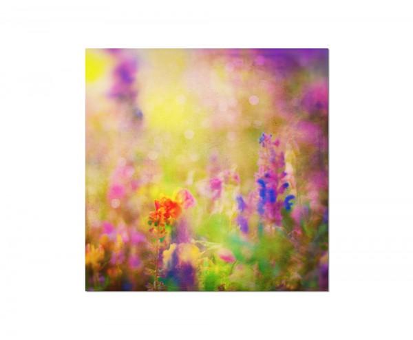 80x80cm Frühling Blumen