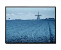 105x75cm Leinwandbild Petrol Wiese Tulpen Windmühle