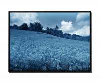 105x75cm Leinwandbild Petrol Mohnblumenfeld unter PETROL BLAUem Himmel