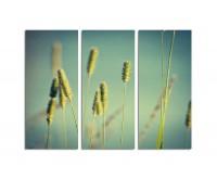 130x90cm wildes Gras Detailaufnahme