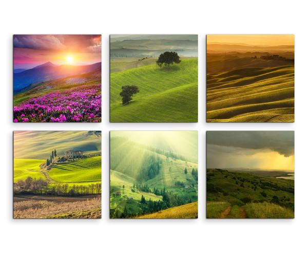 6 teiliges Leinwandbild je 30x30cm -  Landschaft Blumen Wiese Sonnenuntergang Natur