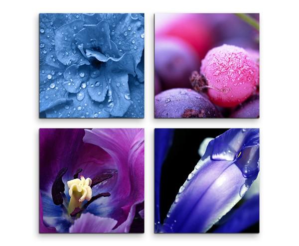 4 teiliges Leinwandbild je 30x30cm  -  Blumen Makroaufnahme Wassertropfen Blau