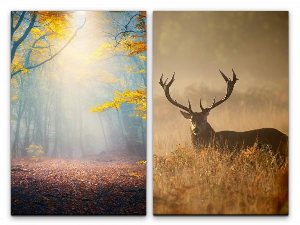 2 Bilder je 60x90cm Wald Herbst Laub Hirsch Stille Beruhigend Friedlich