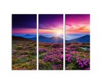 130x90cm wunderschöne Rhododendron Sonnenuntergang Berge