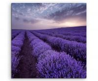 Wandbild Lavendelfelder bei Sonnenaufgang auf Leinwand exklusiver Kunstdruck