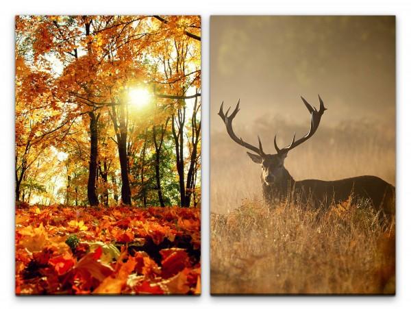 2 Bilder je 60x90cm Wald Herbst Laub Hirsch Hirschgeweih warmes Licht Frieden