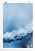 60x90cm Poster Naturfotografie – Frost am Zweig