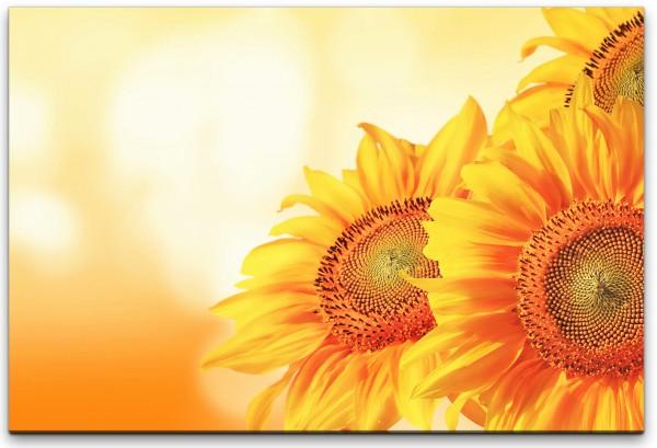 schöne Sonnenblumen Wandbild in verschiedenen Größen