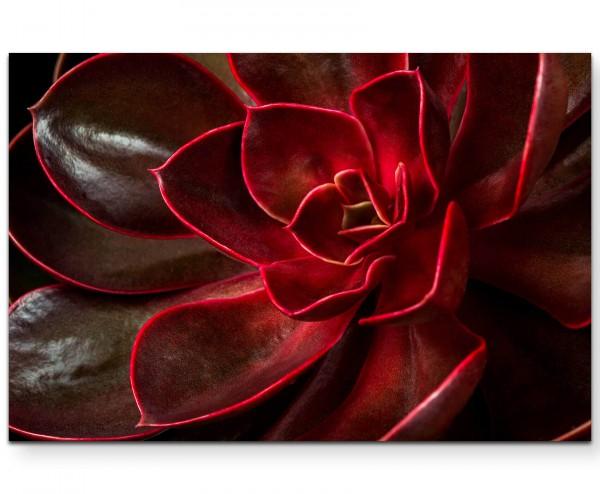 Nahaufnahme – roter Kaktus - Leinwandbild