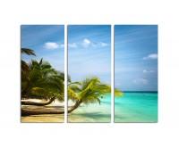 130x90cm liegende Palme Malediven Urlaubsparadies Sandstrand