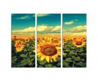 130x90cm Sonnenblume blauer Himmel Vintage