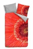 Nahaufnahme Gerbera Rot Blte Bettwäsche Set 135x200 cm + 80x80cm  Atmungsaktiv