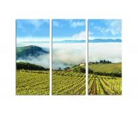130x90cm Toskana Weinberg Nebel Berge