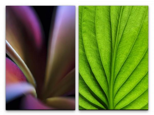 2 Bilder je 60x90cm Grünes Blatt Blattgrün Struktur Grün Dekorativ Entspannend Beruhigend