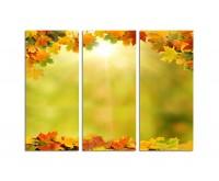 130x90cm buntes Herbstlaub Sonnenschein