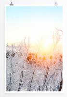 60x90cm Poster Landschaftsfotografie – Hellblaue Winterlandschaft
