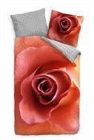 Nahaufnahme Rosenblüte rosa Bettwäsche Set 135x200 cm + 80x80cm  Atmungsaktiv